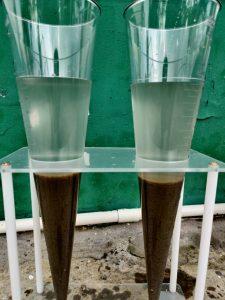 Hướng dẫn nuôi cấy vi sinh cho hệ thống xử lý nước thải ?